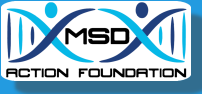 MSD Action Foundation Placeholder Logo